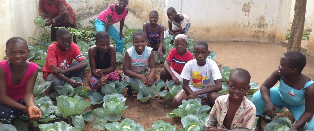 Mission food : Potager dans un orphelinat bénéficiaire (Mai 2013)